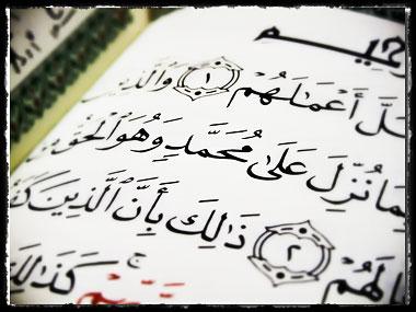 """""""De ki: O, iman edenler için bir hidayet ve bir şifadır"""""""
