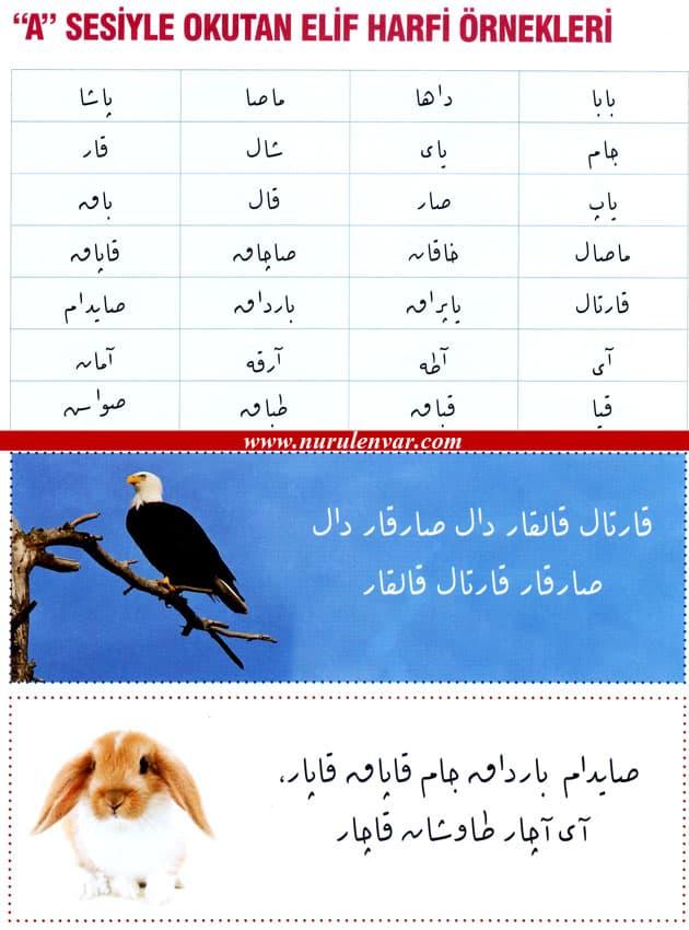 ﺍ (elif) okutucusu için kelime örnekleri