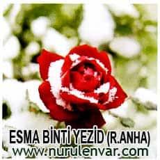 Esma Bint-i Yezid İmajı