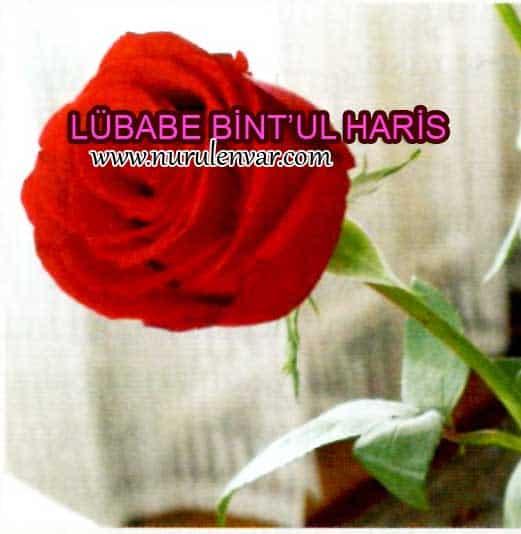 Sahabe Lübabe