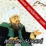 Fatih'in hocası Molla Gürani